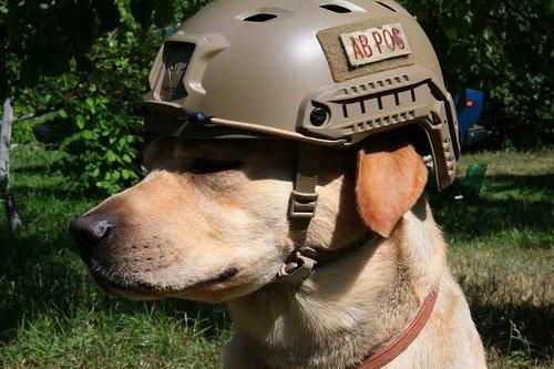 Ops Core FAST Base Jump Military Helmet