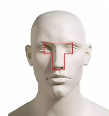 Летальная область головы (T-Box).png