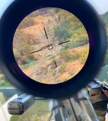 Пулемет. Оптика. Дедал-НВ